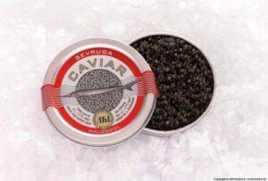 Sevruga-Kaviar