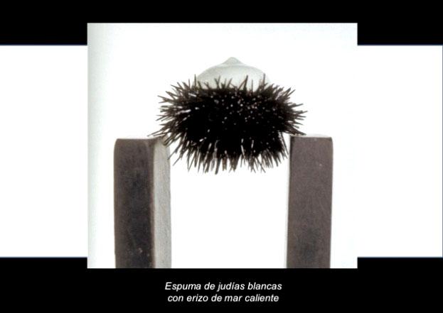 espuma de judias blancas, Quelle: elBulli Foundation